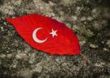 23 nisan ulusal egemenlik ve çocuk bayramı,23 nisan,dünya çocukları,world,Türkiye,MUSTAFA KEMAL ATATÜRK